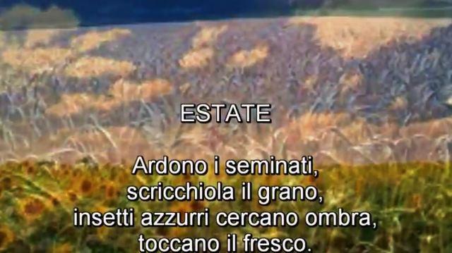 Estate Pablo Neruda Palermomania It