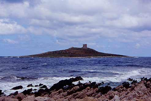 411469f666f2 Grande successo per l escursione all Isolotto di Isola delle Femmine ...